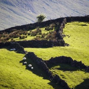 Irland - Connemara und Westküste