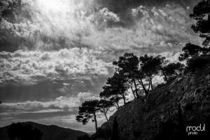 Mallorca - schwarzweiß