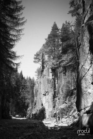 Nord | Süd 16 – Südtirol