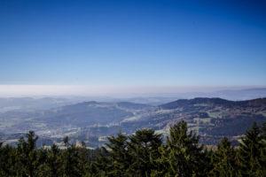 Bayerischer Wald 2