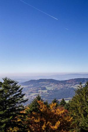 Bayerischer Wald 1