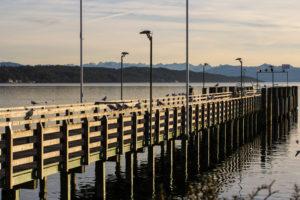 Starnberger See im Dezember 5